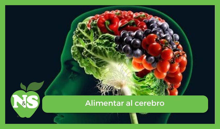entrevista para el diario 39 el pa s 39 alimentar el cerebro